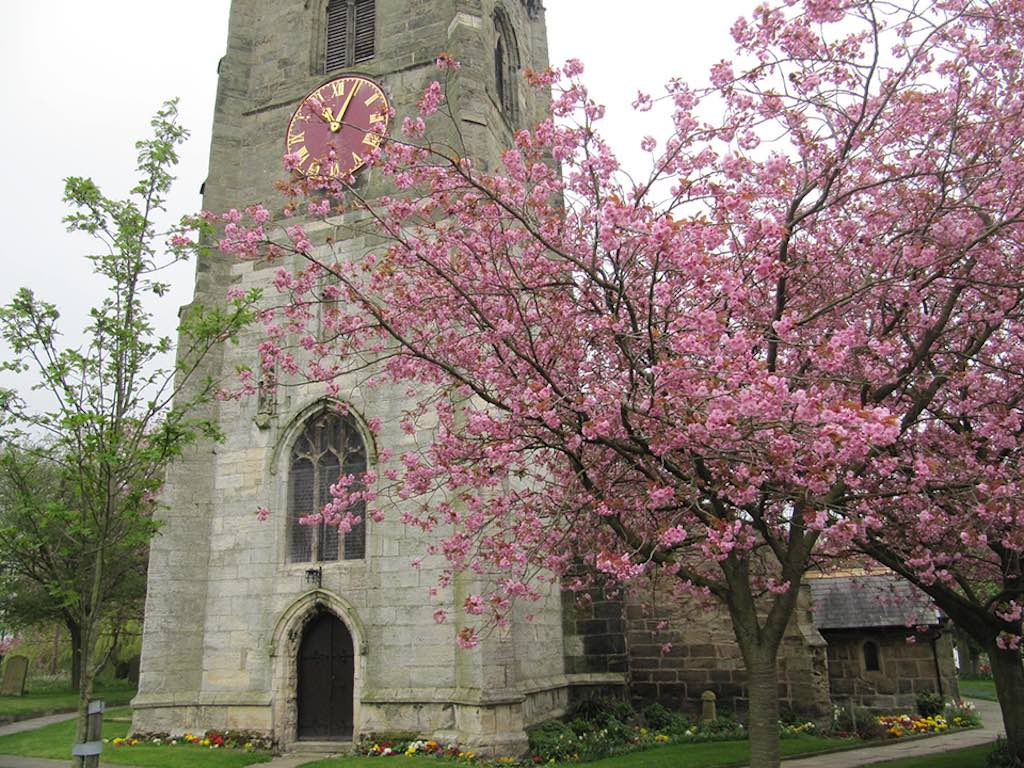 Barwick-in-elmet-in-bloomCHERRY-BLOSSOM-ALL-SAINTS-CHURCH