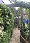 A lovely Pergola through to a quite seat.