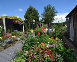Open Gardens 2019