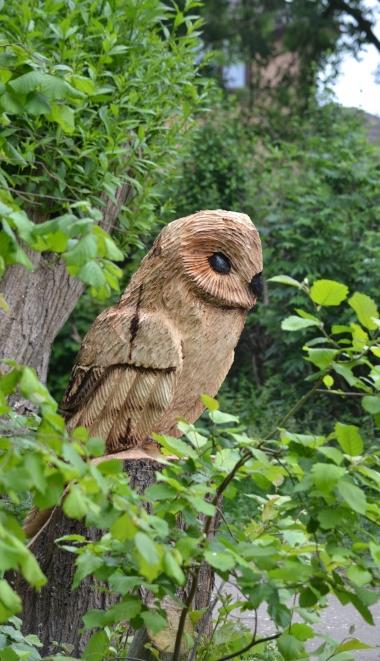 Community Orchard Owl
